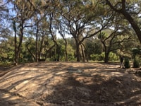 New foundation that required land clearing